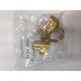 RACCORD PLASTIQUE R556 MALE TEFLONE 15/21 25/20 GIACOMINI R556Y066